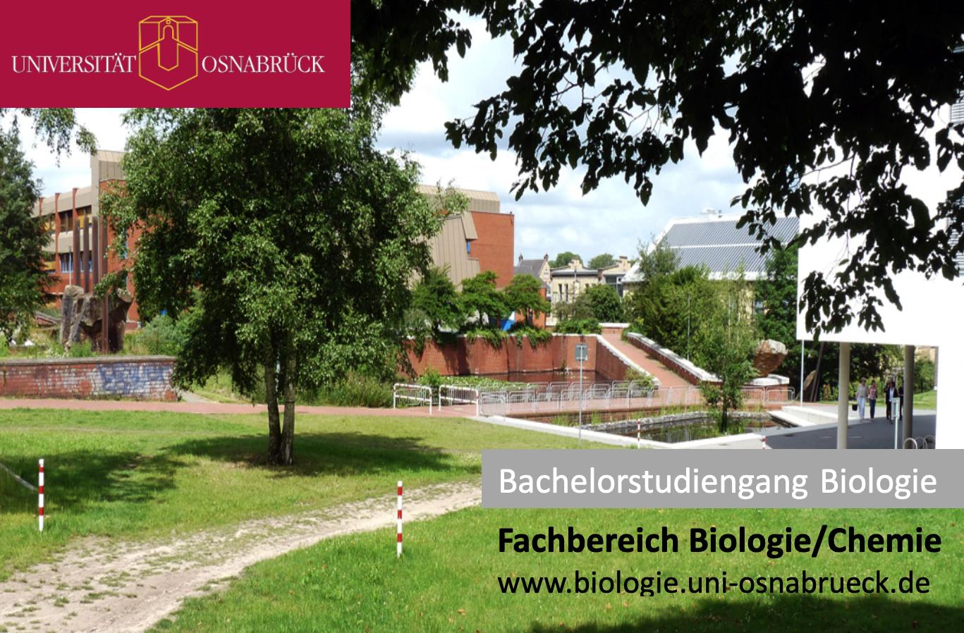 Bachelor Biologie