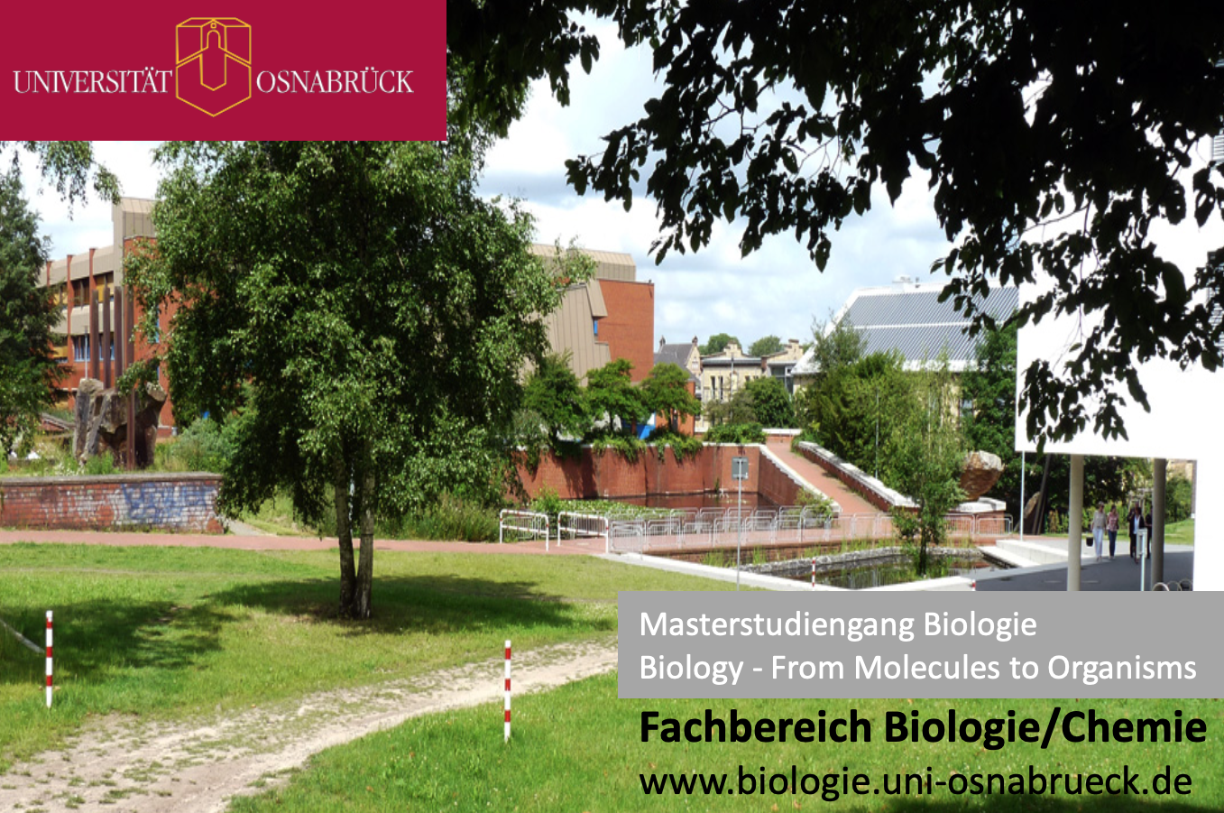 Uni Hamburg Master Biologie
